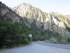 Rock Climbing Photo: Dead Snag Wall