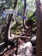 Rock Climbing Photo: The fixed lines on the approach gully were difficu...