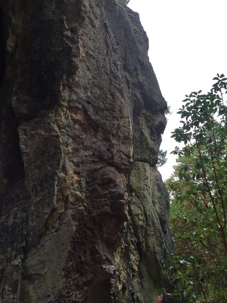 Rock Climbing Photo: Nice photo of the route with draws on the bolts.