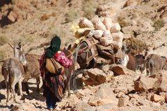 Rock Climbing Photo: Nomads