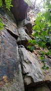 Rock Climbing Photo: Treet, Lower Leda, TN