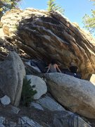 Rock Climbing Photo: Erica brushing off the holds on this pretty line.