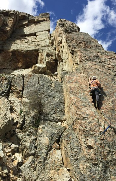 Rock Climbing Photo: The east face of Buena Vista Wall. Kent starting u...