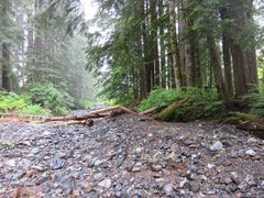 Rock Climbing Photo: Wide dry creekbed that brings you to under Roan Wa...