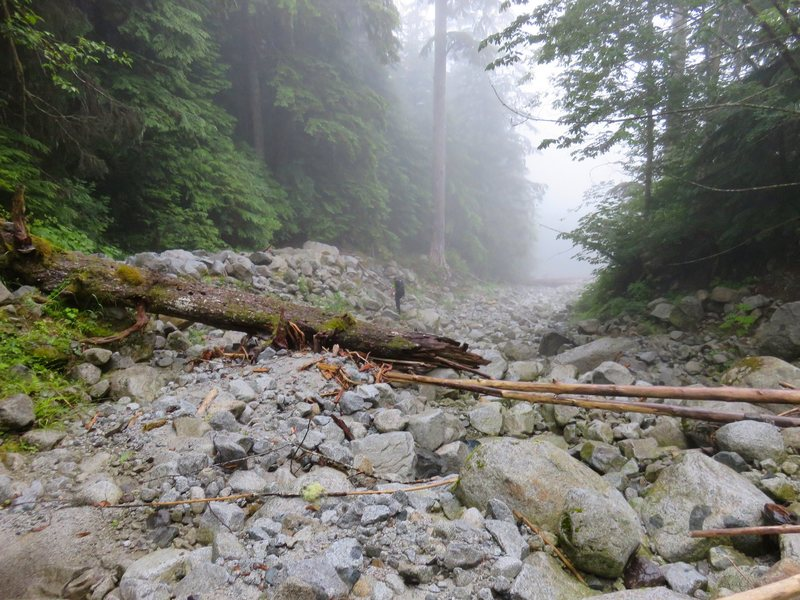 """Heading down the washout of """"giant white boulders"""" just after leaving the trail. 1:25-1:35 from car."""