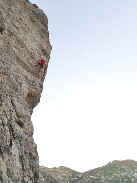Rock Climbing Photo: Mark cruising the route.  Otto Casal photo.