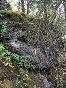 Rock Climbing Photo: boulder at fossil rock