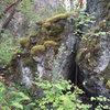 boulder at fossil rock