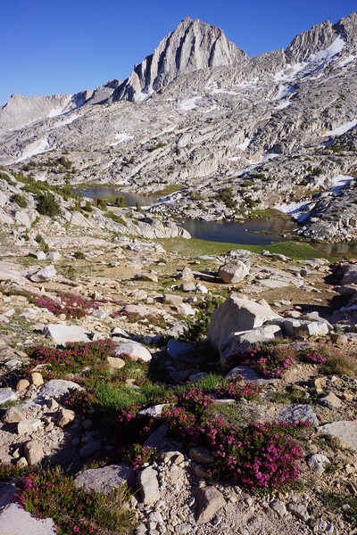 from Italy Pass Trail