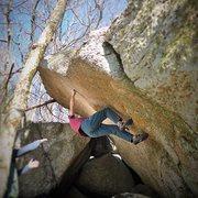 Rock Climbing Photo: Pitt Bull V5