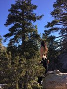 Rock Climbing Photo: Tinna enjoying the view on top of this fun boulder...