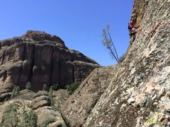 Rock Climbing Photo: Pinnacles National Park