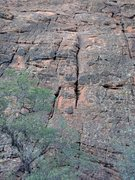Rock Climbing Photo: Colliewobbles
