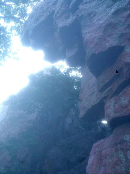 Rock Climbing Photo: Side profile of the Rex