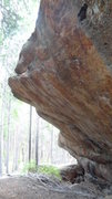 Rock Climbing Photo: Potential hard stuff.