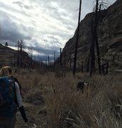 Approaching M canyon outside Tonasket