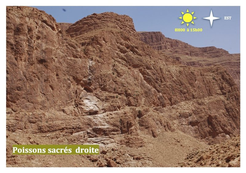 Climbing in Morocco  Escalade au Maroc<br> Guidebook climbing in the Todra gorges <br> Poissons sacrés droite