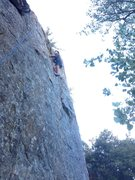 Rock Climbing Photo: Joel Alexander Barnett on Should I Go