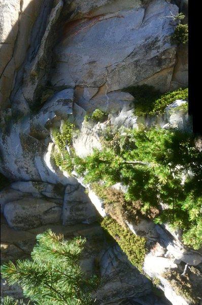 Rock Climbing Photo: Idyllwild back country gravity rift!!!