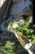 Rock Climbing Photo: Idyllwild back country gravity rift!!!