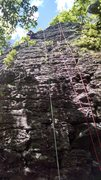 "Rock Climbing Photo: ""Mowgli Grape"" on the left and ""Dir..."