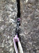 Rock Climbing Photo: Purple dragon as active and passive