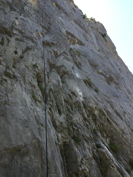 Rock Climbing Photo: Several More Lives to Live
