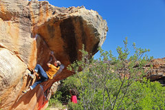 Rock Climbing Photo: Topping out Silky Natural, photo by Natalie Rose J...