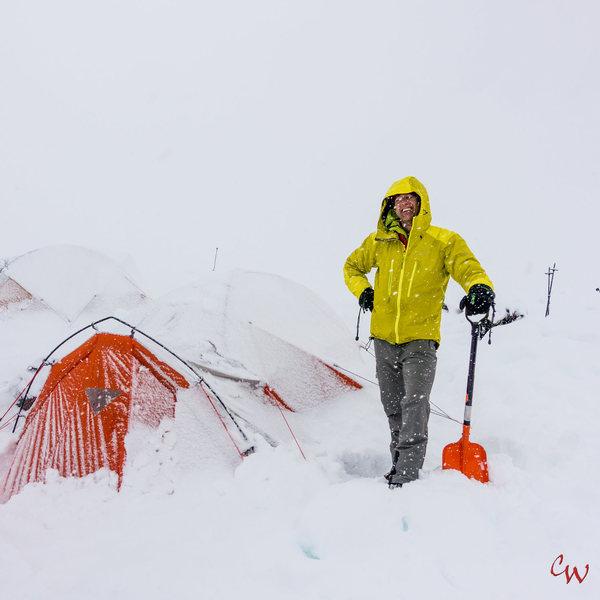 Time to work - Pika Glacier Alaska