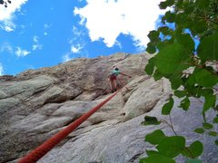 Rock Climbing Photo: The aspens lend a pleasant vibe to this wall.  Sep...