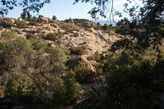 Rock Climbing Photo: Tomato boulder