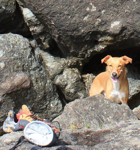 Nino on the climb.