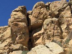 Rock Climbing Photo: Live Trap