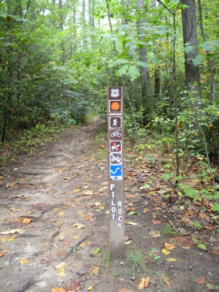 Trail-head sign.  Look for this sign, on your left, as you drive in on FS-1206 (the dirt road).