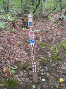 Rock Climbing Photo: Trail-head to base of rock.  This sign will be on ...