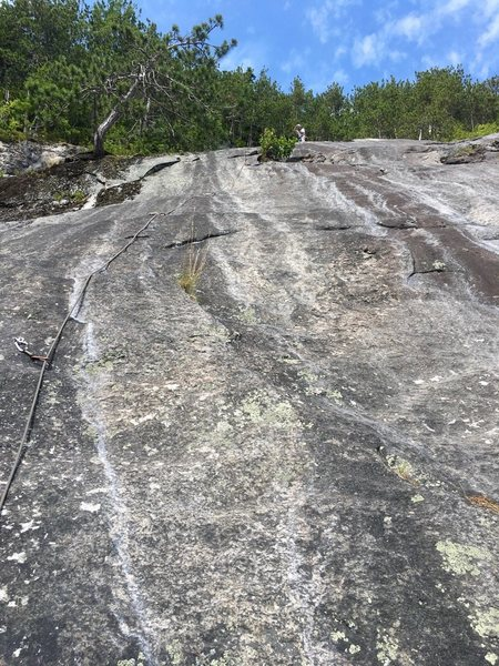 """Looking Up the stellar P5 of """"DLM-Memorial"""" Alternate """"P5a""""<br> climbs a few feet right of the bush. The tree on left MIGHT help a party trying to rap with a single 60m rope."""