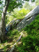 Rock Climbing Photo: RW points towards DLM.  The large R-facing corner ...