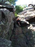Dave Erickson pulling through the nesting area.