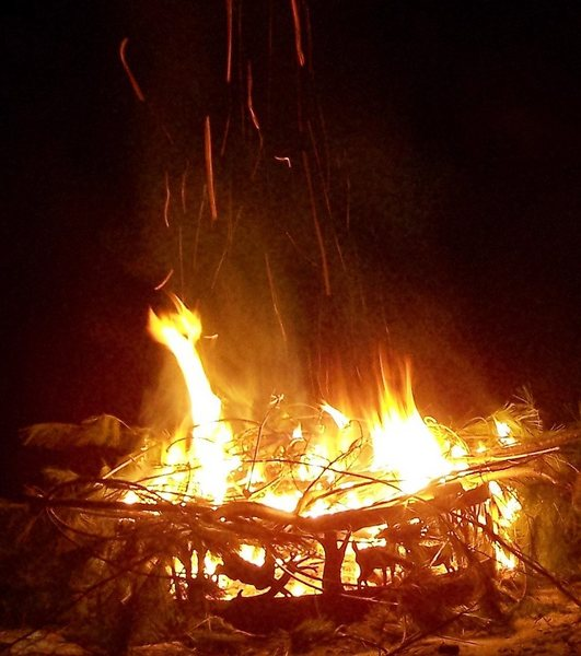great campfires. Collect all the dead wood from forest floor you wish for fires. We don't sell you firewood; its' here to use from nature.