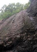 Rock Climbing Photo: Leading Bolt Line (5.8). First lead in Rumney!