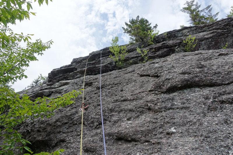 Rock Climbing Photo: P1 head wall.
