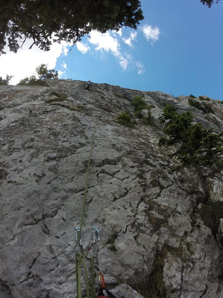 Looking up pitch 7.
