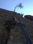 Rock Climbing Photo: A & E Finger Crack