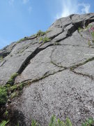 Rock Climbing Photo: The Crack Garden pre-gardening, pic taken just aft...