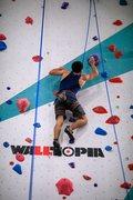 Walls by Walltopia