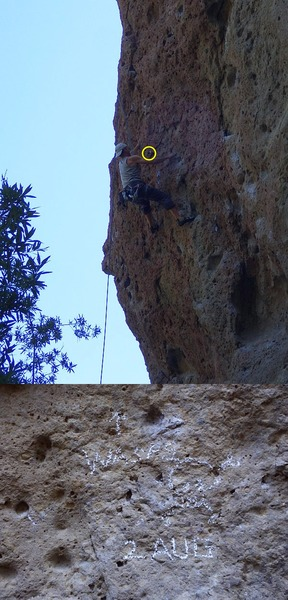 Rock Climbing Photo: Wasp nest on Family Jewel, as of 3 Aug 2016.