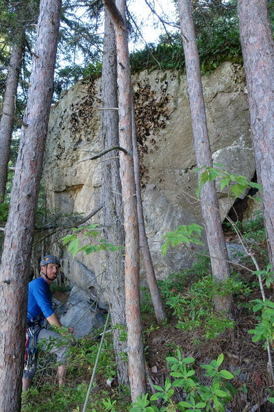 DLM, P6 anchor. Big boulder in the trees.