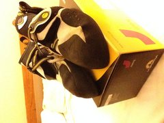 Shoes on original box