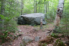 Rock Climbing Photo: Bushwack marker after 0.1 miles and where you turn...