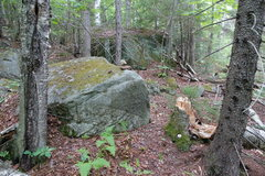 Rock Climbing Photo: Start of bushwack, with tiny cairn. Hike 0.3 miles...